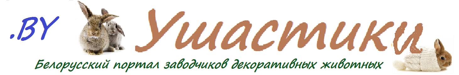 УШАСТИКИ